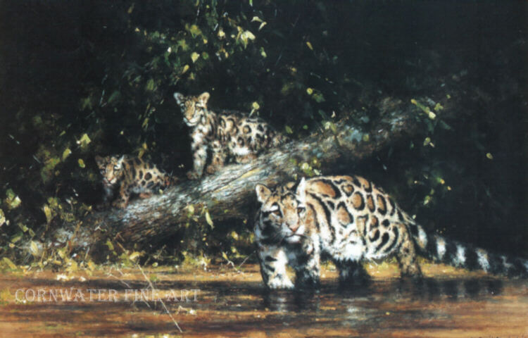 david shepherd clouded leopard and cubs, print