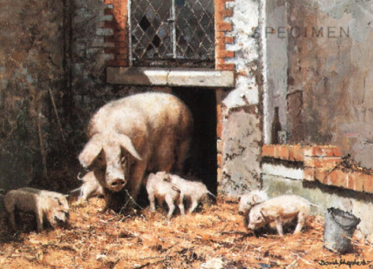 david shepherd mrs P and the kids, pigs signed print