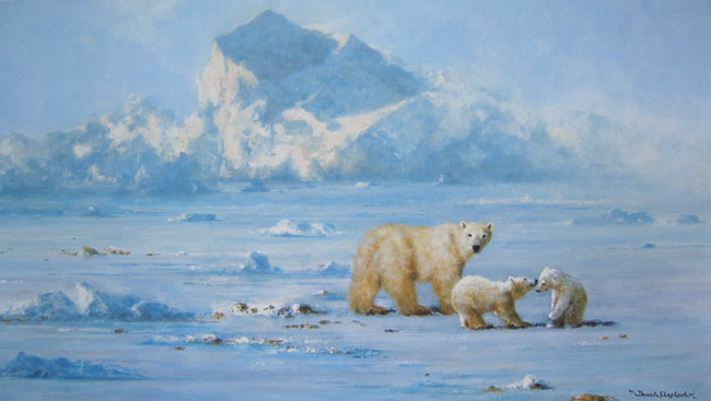 david shepherd polar bear country print