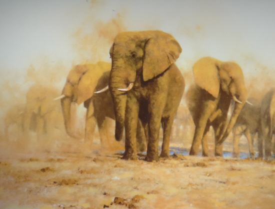 David Shepherd,  signed limited editions, original paintings