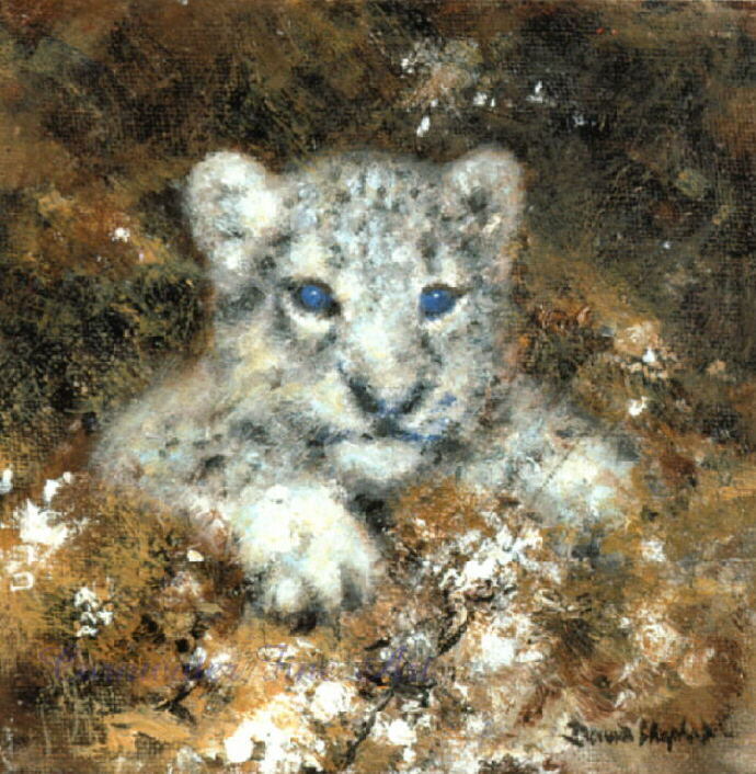 david shepherd snow leopard cub cameo