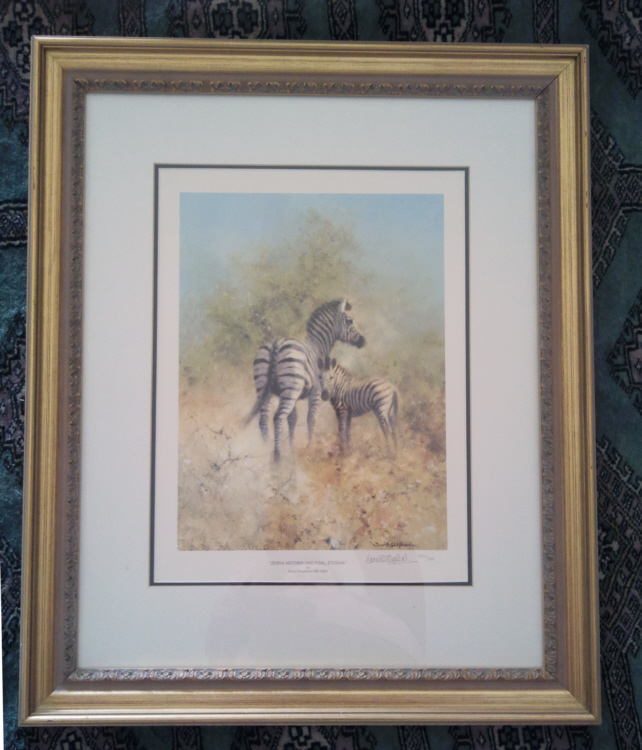 david shepherd zebra mother and foal print framed